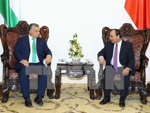 Vietnam y Hungria robustecen lazos multifaceticos hinh anh 1