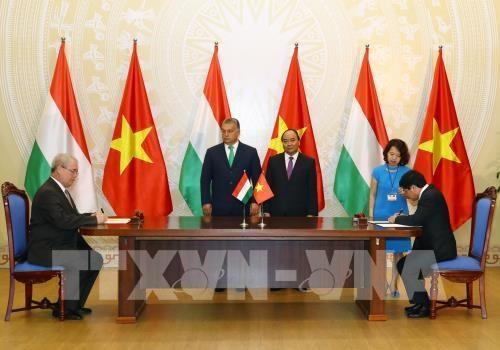 Vietnam y Hungria buscan oportunidades de cooperacion en agricultura hinh anh 1