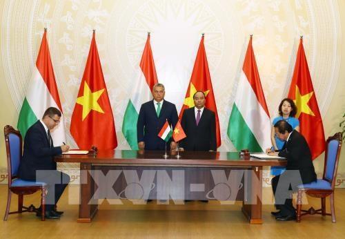 Impulsan cooperacion Vietnam-Hungria en informatica y comunicacion hinh anh 1