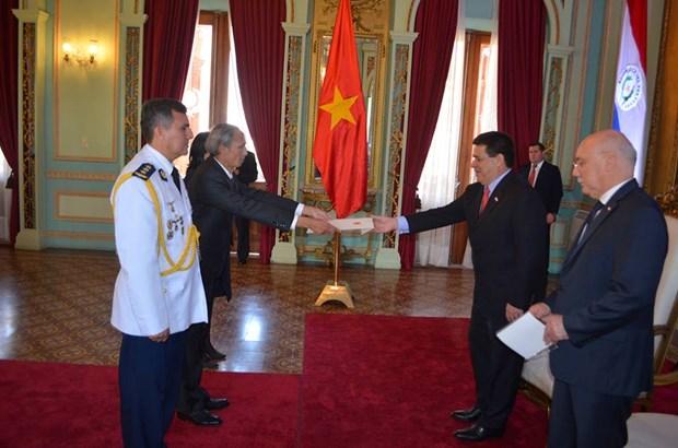 Vietnam y Paraguay robustecen relaciones de cooperacion hinh anh 1