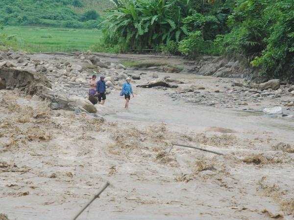 Proyecto de prevencion de desastres naturales beneficia a pobladores en Centro de Vietnam hinh anh 1