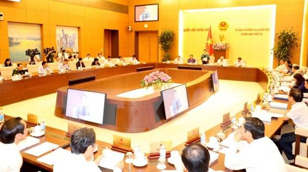 Comision parlamentaria debate proyecto de Ley de unidades administrativas y economicas especiales hinh anh 1
