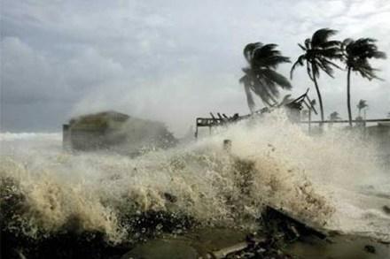 Expertos alemanes comparten informaciones sobre cambio climatico en Vietnam hinh anh 1