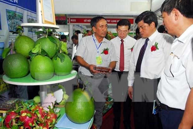Productos agricolas de Vietnam buscan conquistar el mercado de Sudcorea hinh anh 1