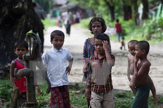 Myanmar y Bangladesh crean grupo conjunto para la repatriacion de rohingyas hinh anh 1