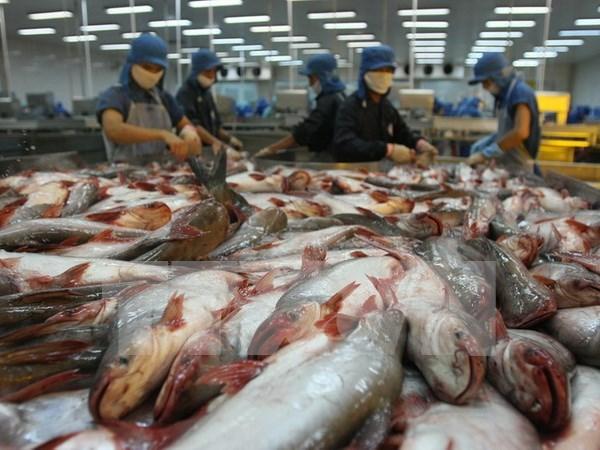 Premier exhorta a resolver dificultades de ventas de pescado Tra a EE.UU. hinh anh 1