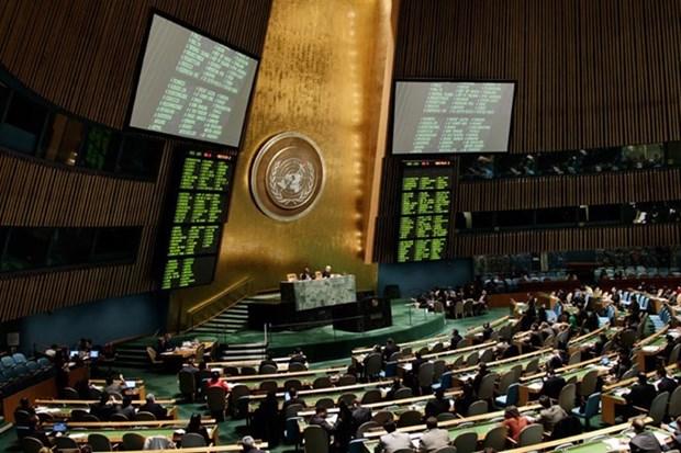 Reafirma Vietnam apoyo a esfuerzos de ONU en lucha contra la droga hinh anh 1