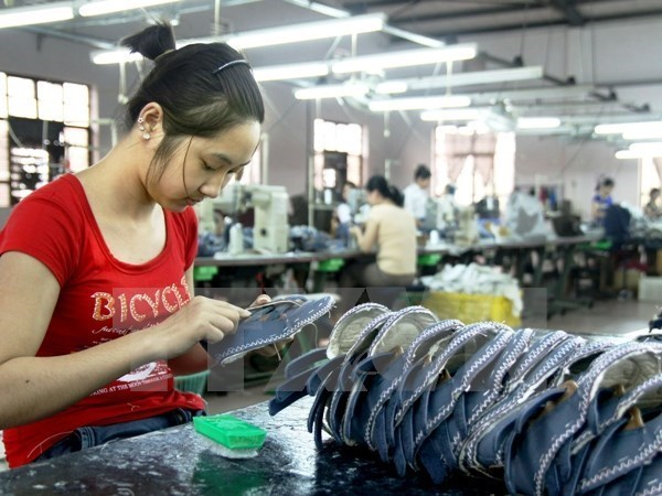 Vietnam promueve igualdad de genero mediante politicas laborales hinh anh 1