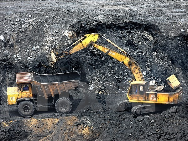 Grupo de carbon de Vietnam impulsara exportaciones hinh anh 1