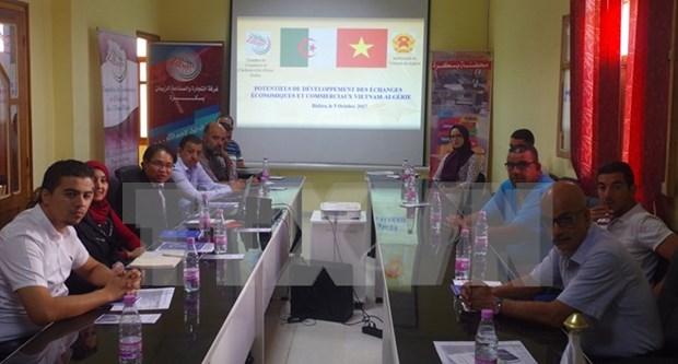 Vietnam y Argelia buscan impulsar cooperacion economica hinh anh 1