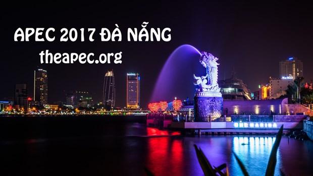 Da Nang garatiza seguridad vial durante la Cumbre de APEC hinh anh 1