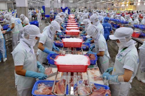 Vicepremier vietnamita pide promover marca de pescado Tra hinh anh 1