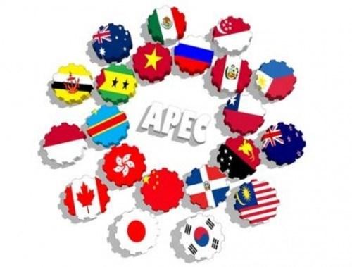 Da Nang ultima preparativos para la Cumbre del APEC hinh anh 1