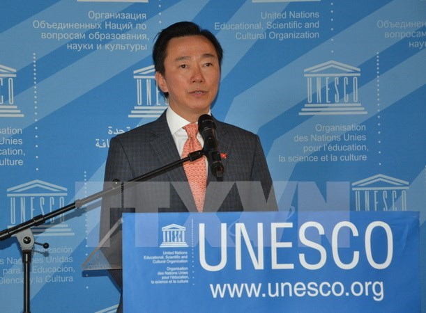 Candidatura de Vietnam al cargo de director general de UNESCO muestra su responsabilidad internacional hinh anh 1