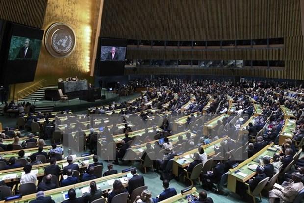 Vietnam presenta ante ONU recomendaciones para mitigacion de secuelas de desastres naturales hinh anh 1