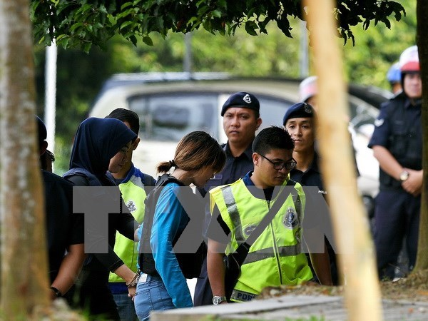 Vietnam continua protegiendo derechos de ciudadana arrestada en Malasia hinh anh 1