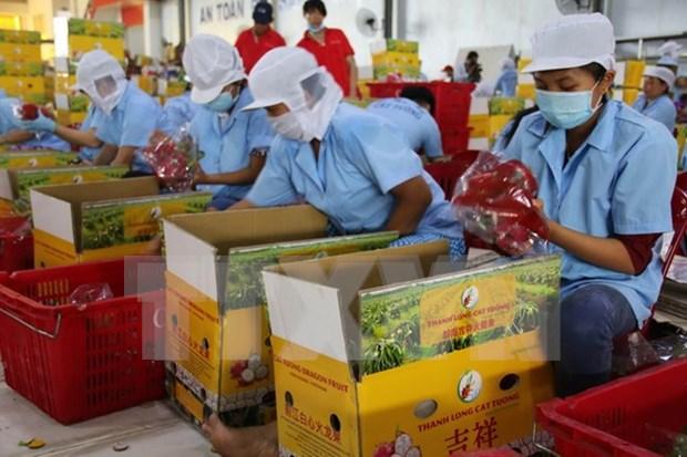 Impulsan ampliacion de la marca vietnamita en Sudcorea hinh anh 1