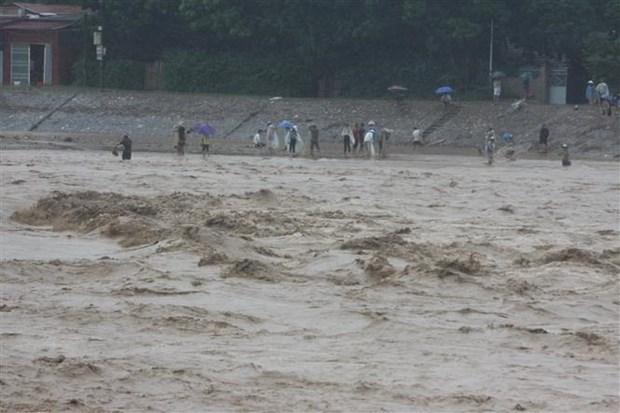 Oficina del presidente de Vietnam realiza actividades de apoyo a victimas de inundaciones hinh anh 1