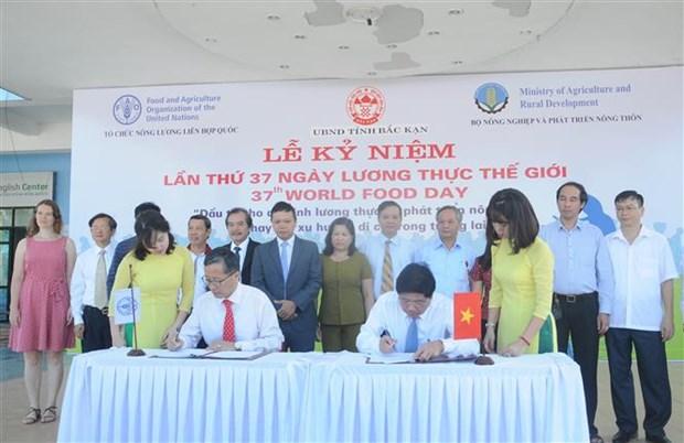 Vietnam celebra Dia Mundial de la Alimentacion hinh anh 1