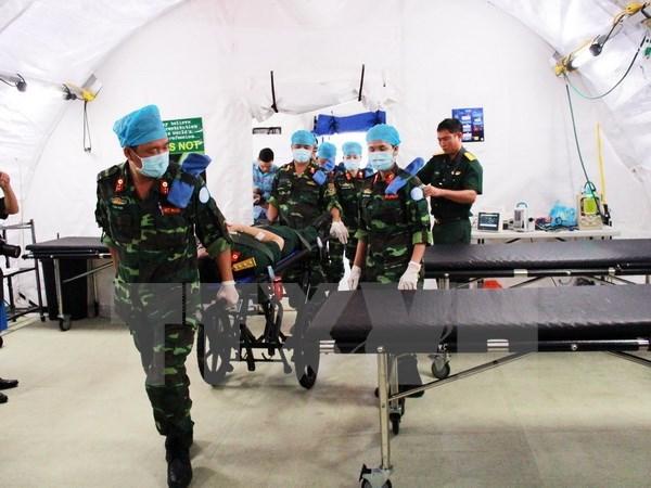 ONU aprecia participacion de Vietnam en misiones de paz, dijo viceministro hinh anh 1