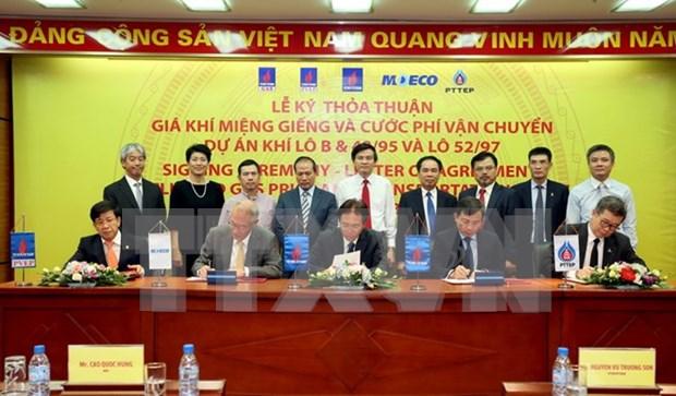 Firman dos contratos para desarrollo de yacimiento de gas en Vietnam hinh anh 1