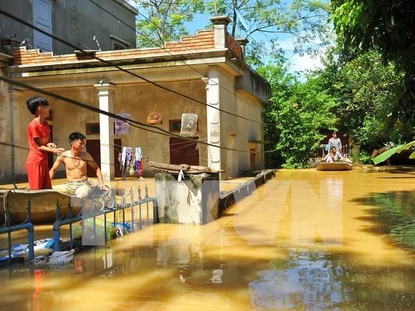 Ninh Binh realiza esfuerzos para superar secuelas de inundaciones hinh anh 1