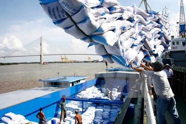 Vietnam busca aumentar valor de las exportaciones de arroz hinh anh 1