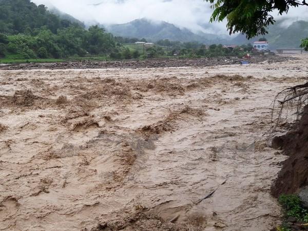 Japon ofrece apoyo de emergencia a damnificados de inundaciones en Vietnam hinh anh 1