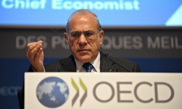 OCDE: Vietnam desempena papel importante en integracion financiera del APEC hinh anh 1