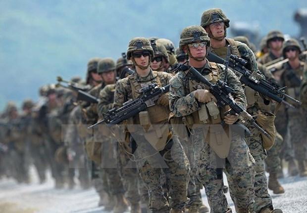 Tailandia y EE.UU realizaran en febrero maniobra militar Cobra Dorada hinh anh 1
