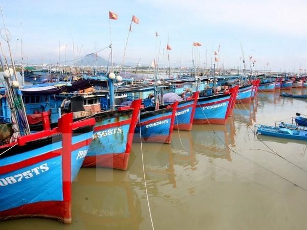 Provincia costera vietnamita refuerza economia maritima hinh anh 1