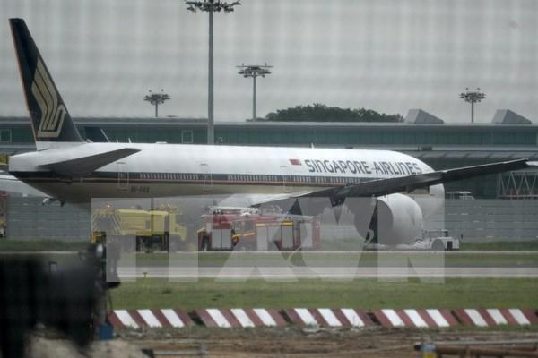 Singapore Airlines realiza un pedido de 39 aviones a Boeing hinh anh 1