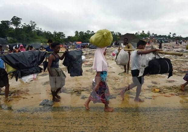 Bangladesh y Myanmar acuerdan controlar flujo de desplazado rohingyas hinh anh 1