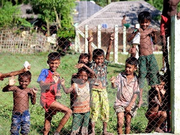 Gobierno de Myanmar reanuda negociaciones de paz hinh anh 1