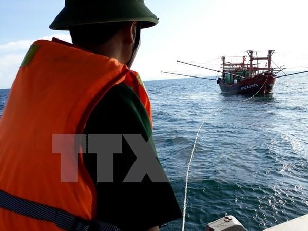 Rescatan a marineros de barco naufragado en aguas de Vietnam hinh anh 1