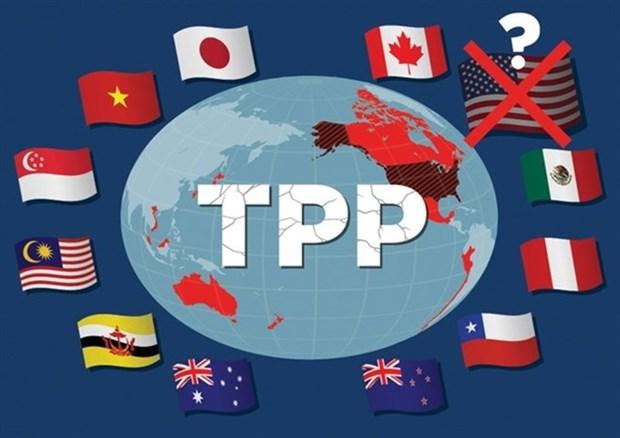 Jefes de delegaciones de negociaciones del TPP se reunen en Japon hinh anh 1