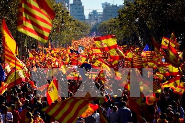Vietnam subraya importancia del respeto de Constitucion por la unidad de Espana hinh anh 1