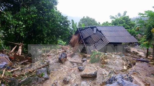 Vietnamitas en Camboya realizan actividades de apoyo a pobladores connacionales tras inundaciones hinh anh 1