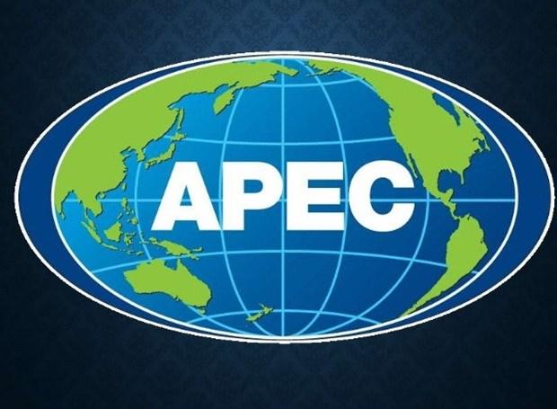 APEC por convertir desafios en fuerza de impulso hinh anh 1