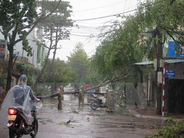Vietnam responde a efectos del tifon Damrey hinh anh 1