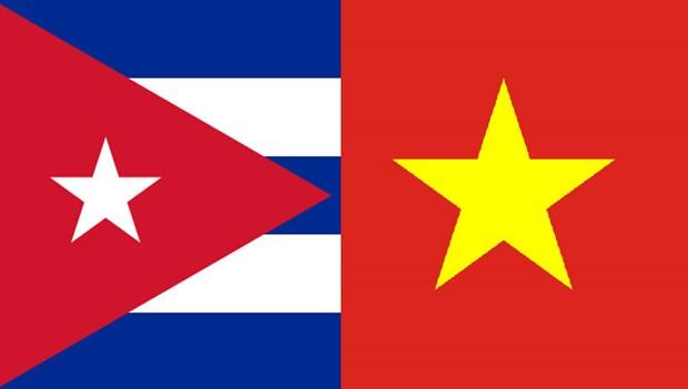Promueven la solidaridad Vietnam-Cuba hinh anh 1