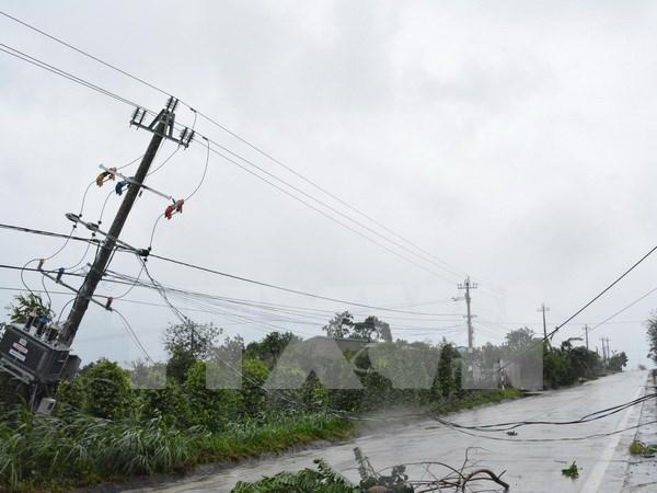 Vietnam registra grandes perdidas por el tifon Damrey hinh anh 1