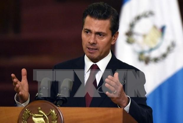 Presidente mexicano: Vietnam y Mexico uniendo al Pacifico hinh anh 1