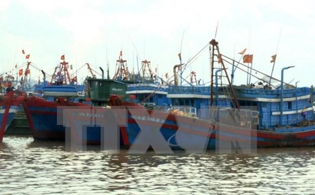 Vietnam impulsa aplicacion de tecnologias avanzadas en la pesca hinh anh 1