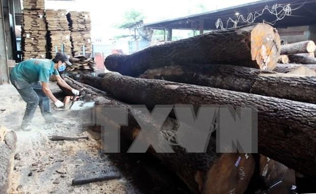 Vietnam reporta ingreso multimillonario por exportacion de productos madereros hinh anh 1