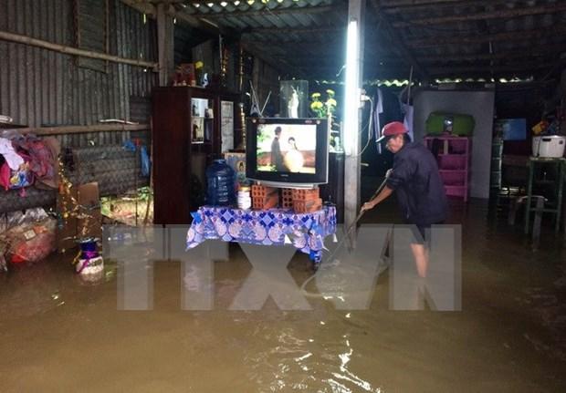Premier vietnamita orienta labores de recuperacion tras el tifon Damrey hinh anh 1
