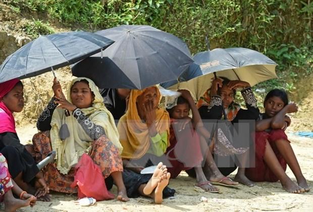 Consejo de Seguridad de ONU emite declaracion sobre situacion en estado myanmeno de Rakhine hinh anh 1
