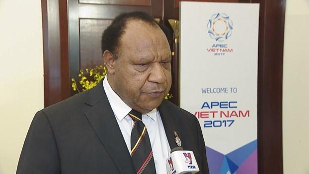 APEC 2017 en Vietnam, una buena experiencia para Papua Nueva Guinea hinh anh 1