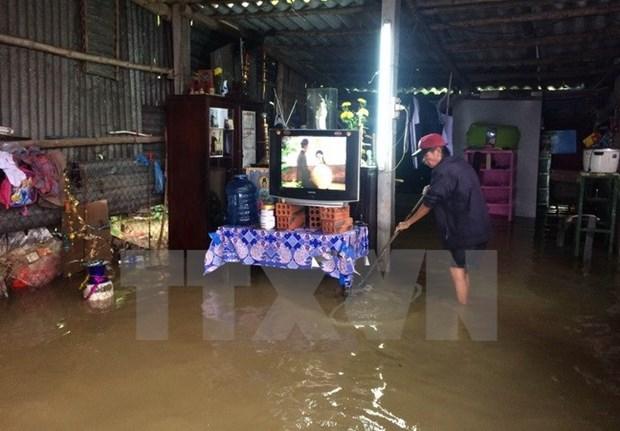 Japon presta asistencia a provincias vietnamitas afectadas por tifon Damrey hinh anh 1