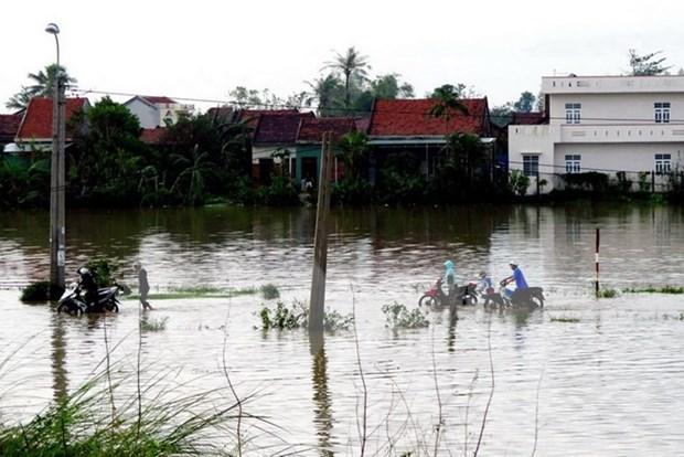 Asciende a 89 numero de muertos en Vietnam por tifon Damrey hinh anh 1